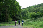 1 June Forge Valley & Raincliffe Woods