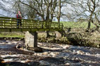 7 March Bowes to God's Bridge & Deepdale