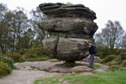 Brimham Rocks & Glasshouses
